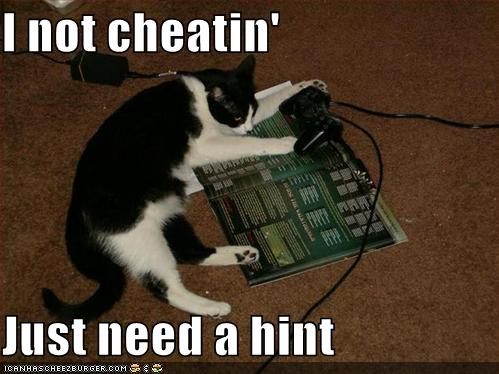 lolcats-funny-pictures-cheating-gamer-cat